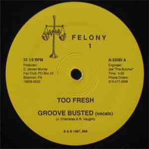 Too Fresh - Groove Busted